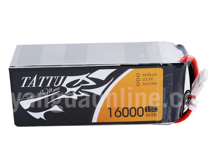 16000mah-6s-15c-ec5-1.jpg